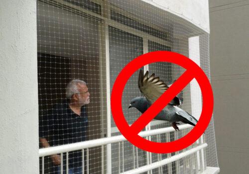 anti-pigeonnets-1024x768